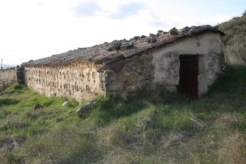 Abejera en Romerales, Tafalla.