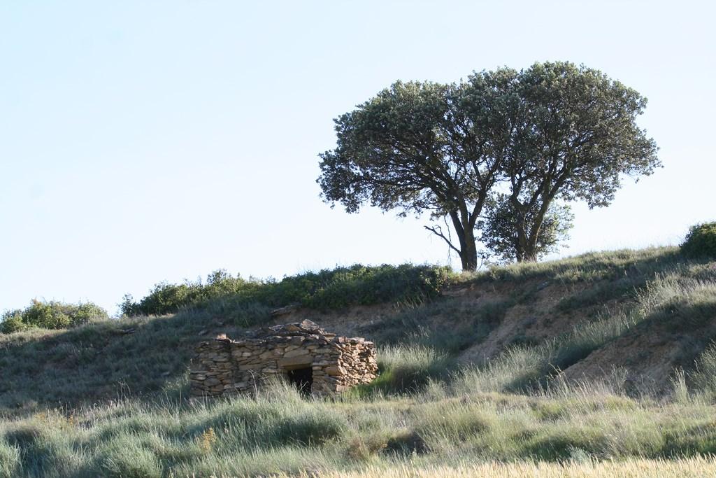 Cabaña en La Molonera